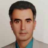 مشاوره آنلاین از دکتر محمد هادی زاده فوق تخصص گوارش و کبد