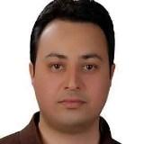 دکتر سیدشهاب الدین متولی امینی